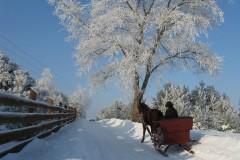 Żukowo zimą