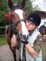 Z galerii: Konie