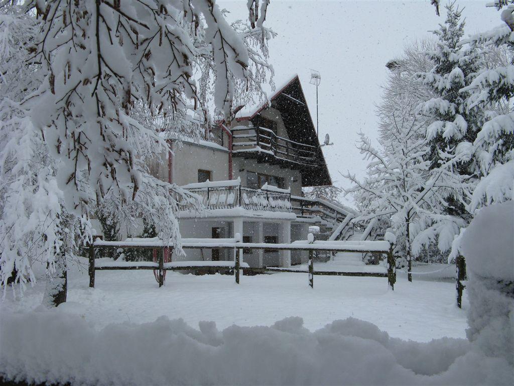 Zima 2